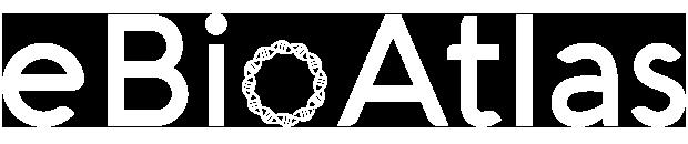 eBio Atlas Logo White